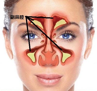鼻くそ が 臭い 鼻の中が臭い!原因不明の場合は蓄膿症に注意、「3割の裏にある後鼻漏...